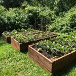 Raised Garden Bed Kit
